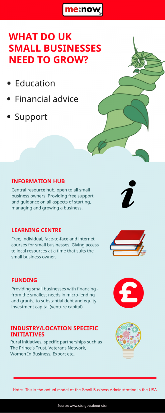 what do small businesses need for success infographic